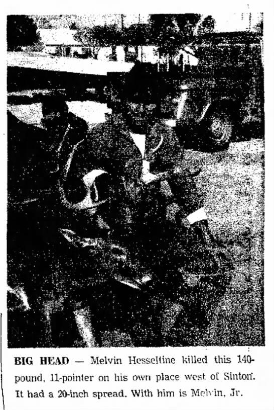 Nov 1970 - Melvin Hesseltine kills buck