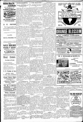 Logansport Pharos-Tribune from Logansport, Indiana on March 3, 1891 · Page 3