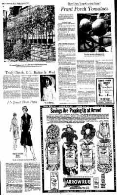 Sunday Gazette-Mail from Charleston, West Virginia on August 10, 1975 · Page 38
